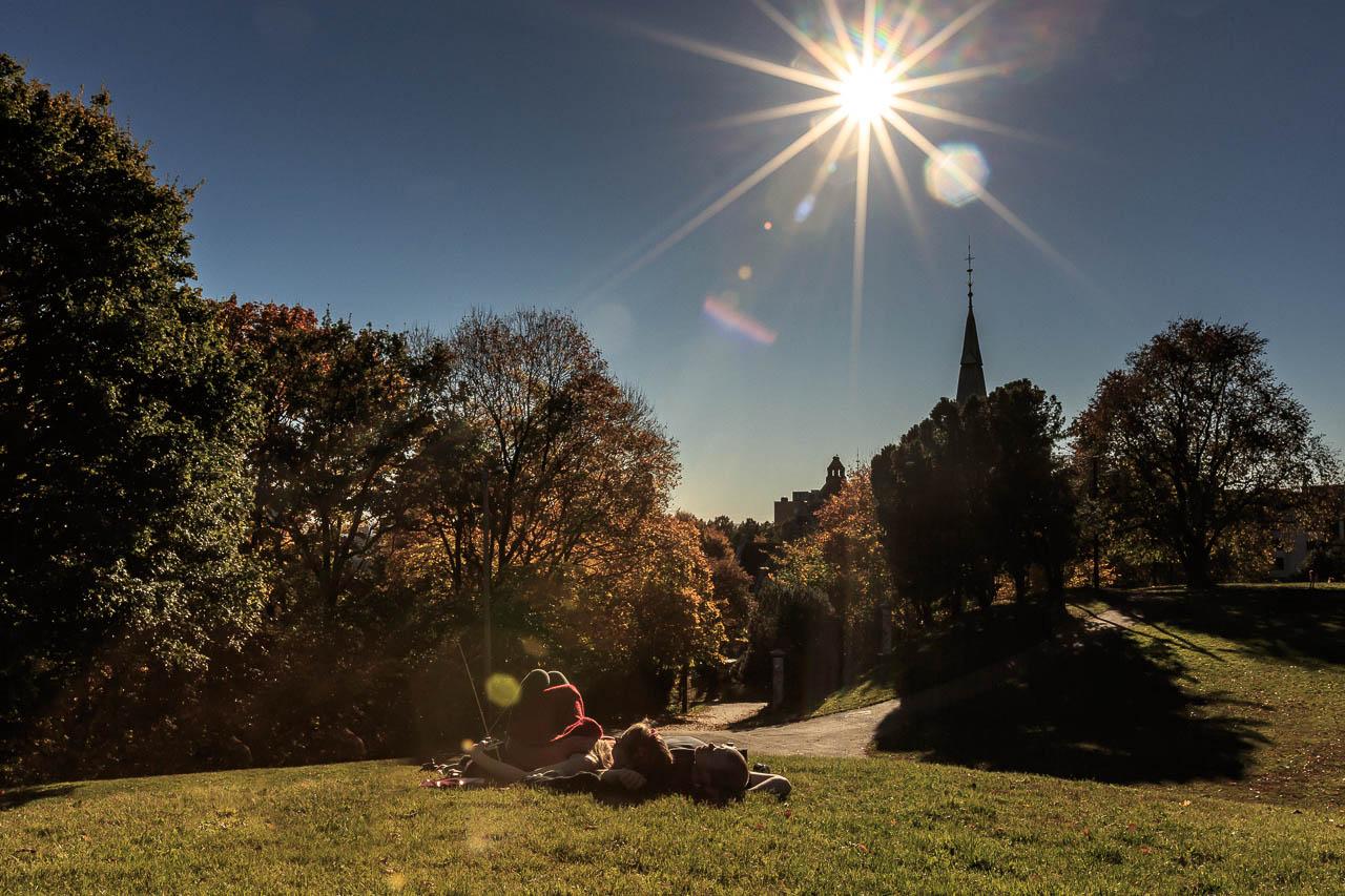 avslappende-stemning-i-stensparken-i-oslo-en-solfylt-fargerik-hostdag