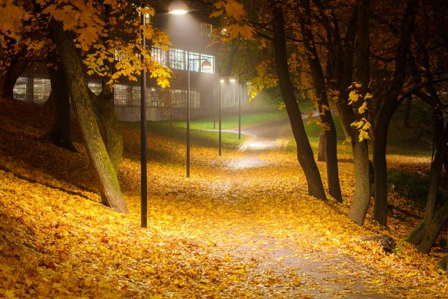 Rådhuskaia Oslo sett i en såpeboble •
